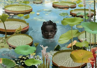 Tentoonstellingen Ruud Empel: years photo works