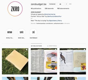 Expositions Z€RO Budget, Exposition virtuelle Instagram