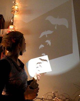 Stages,cours Drôles d oiseaux ! avec Anaïs Lambert