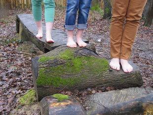 Loisirs Le Parcours Pieds-nus : nouvelle activité sensorielle à l Escale forestière