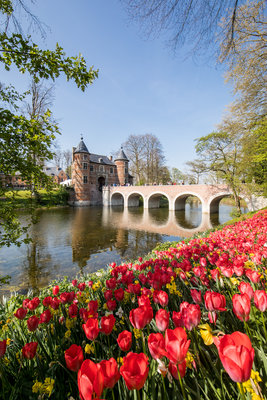Ontspanning Floralia Brussels