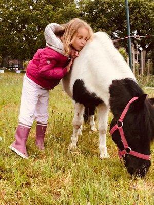 Stages,cours Équitation enfant:balade dans champs à poney...