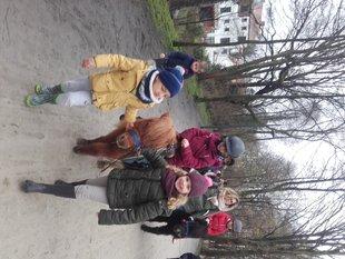 Ontspanning Ponywandeling  voor kinderen vanaf maanden al...