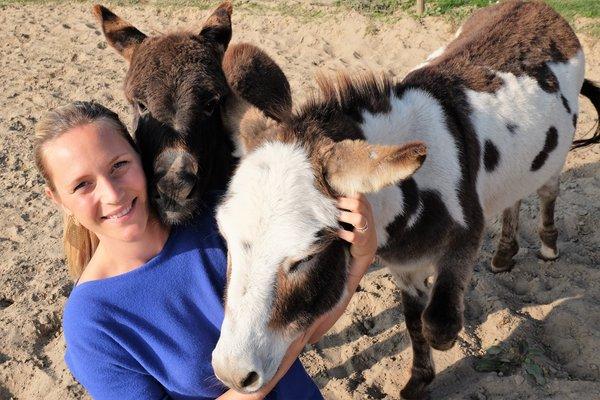 Loisirs Balades avec ânes