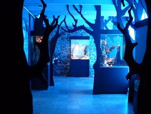 Tentoonstellingen Het Huis Legenden