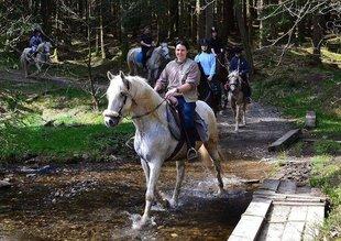 Stages,cours Randonnée à cheval fil la semois