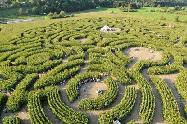 Ontspanning Het Labyrint