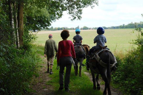 Loisirs Promenade avec ânes
