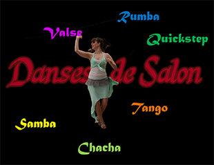 Stages,cours Danses salon l