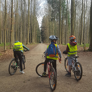 Stages,cours Vtt & English