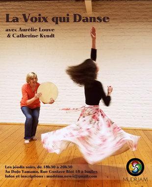 Stages,cours La Voix Danse