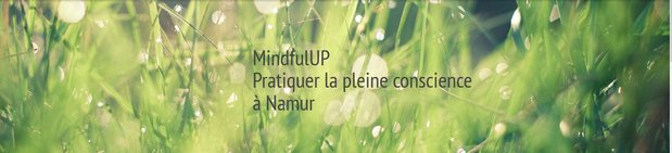 Stages,cours Cycle Pleine Conscience Mindfulness 8 semaines (MBSR) soirée