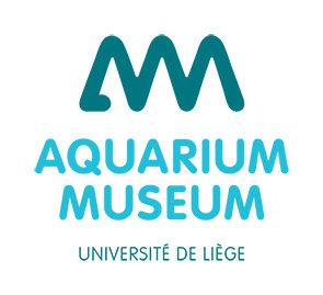 Expositions Aquarium-Muséum Universitaire Liège