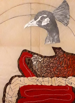 Expositions Chaises oiseaux