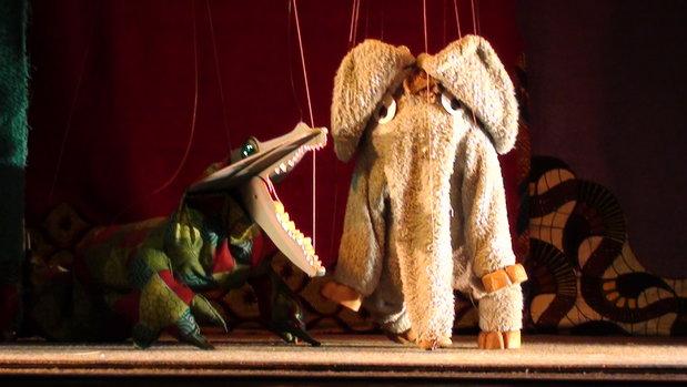 Spectacles Le petit éléphant curieux