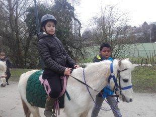 Loisirs Grande promenade à poney pour enfants forêt Soignes