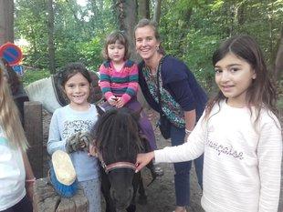 Loisirs Balade à poney pour enfants Baby poney 18mois