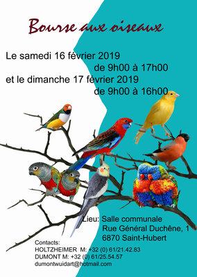 Loisirs Bourse oiseaux organisée le club  Chant Couleurs  Saint-Hubert