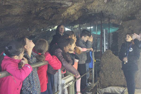 Loisirs Grotte Scladina visite guidée gratuite