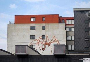 Loisirs Visite guidée Graffiti Street - Vincent Glowinski, Bonom dans ville