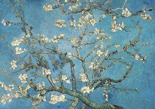Stages,cours Stage peinture - Amandier à manière Van Gogh