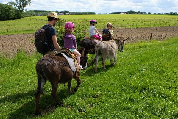 Loisirs Balades à d ânes de poneys pour enfants