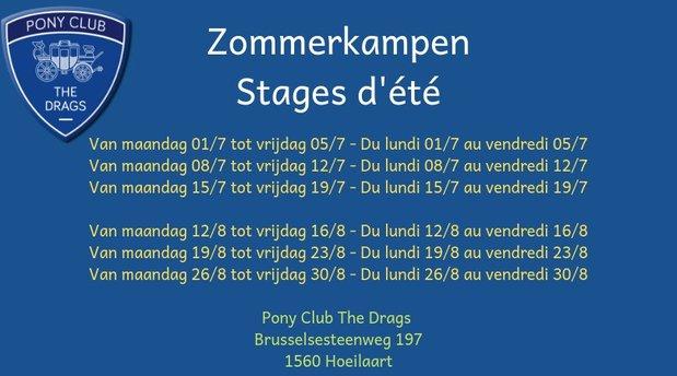 Workshops Stages voor kinderen jongeren