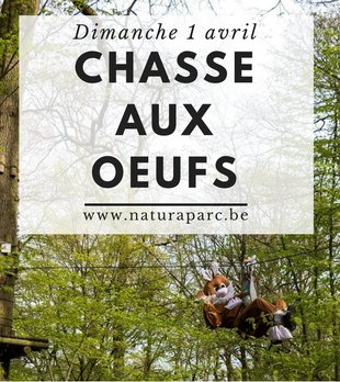 Loisirs Chasse Oeufs