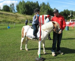 Stages,cours Stages d Eté poney club