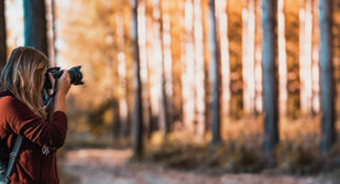 Ontspanning Fotowedstrijd:  Vallei de Zwarte beek beeld .
