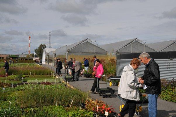 Ontspanning Opendeurweekend Vaste Plantenkwekerij Spruyt - der Jeugd