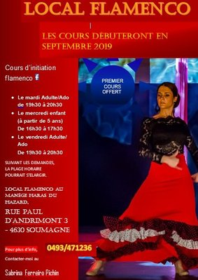 Stages,cours Local Flamenco