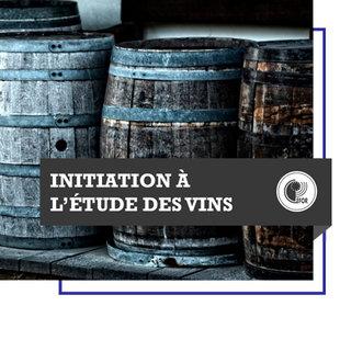 Stages,cours Cours d Oenologie connaissances vins(débutant) (base avant sommellerie)