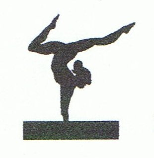 Stages,cours Cours gymnastique dynamic club