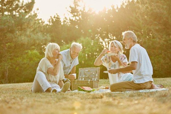 Ontspanning Picknick het Vrijbroekpark