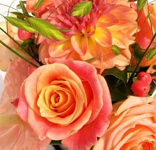 Stages,cours Atelier créatif d Art Floral