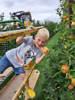 Ontspanning Zelfpluk appelen peren