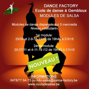 Stages,cours Modules salsa couple