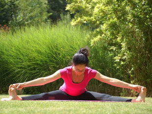 Stages,cours Yoga (Viniyoga)