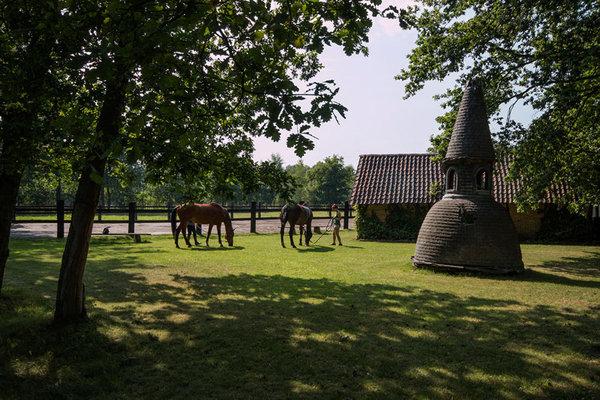 Ontspanning Opendeurdag Manege Sint-Hubert, Horse & country club