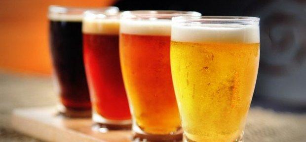 Stages,cours L art la bière : initiation à zythologie