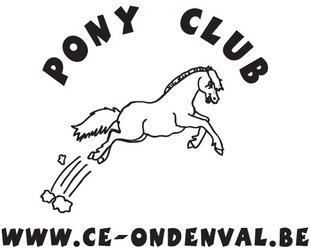 Workshops Pony-club Formule Club voor kinderen 4 10 jaar