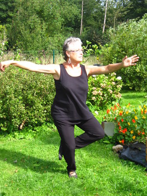 Stages,cours Taichi Chuan style Yang