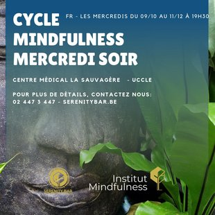 Stages,cours Cycle Mindfulness Mercredis Soir (FR) Uccle