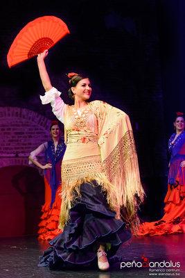 Voorstellingen  Tapas & Flamenco  optreden de dansgroep Compania Andalus