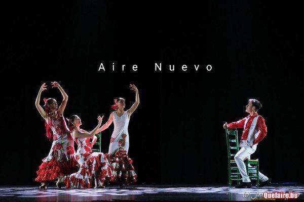 Spectacle Flamenco, animation fêtes toutes...