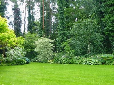 Entretien et création de jardin ,terrassement...