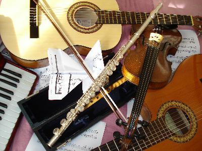 Cours chez vous : flûte traversière , guitare ,...