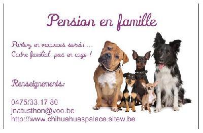 Pension pour chien en famille et dogsitting