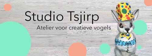 Vier Je Verjaardag Bij Studio Tsjirp Edegem Wattedoen Be
